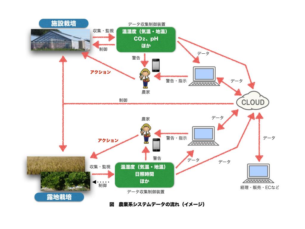 コラムシステム関連図.001